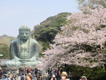 Japan Rundreise Reiseveranstalter Rotel Tours
