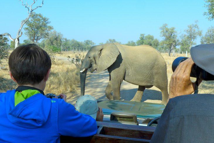 Expeditionsreise Afrika