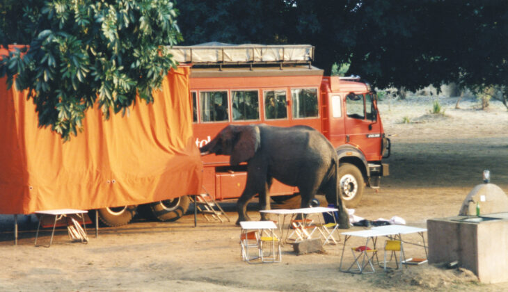 Elefanten, Afrika Rundreise, Rotel Tours