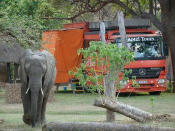 EElefanten, Afrika Rundreise, Rotel Tours