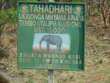 Elefanten, Afrika Rundreise