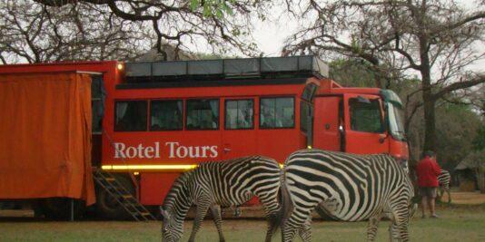 Mit Rotel Tours durch Afrika, Zebra